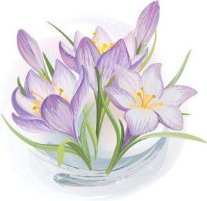 عصاره زعفران الیت برای چی خوبه؟