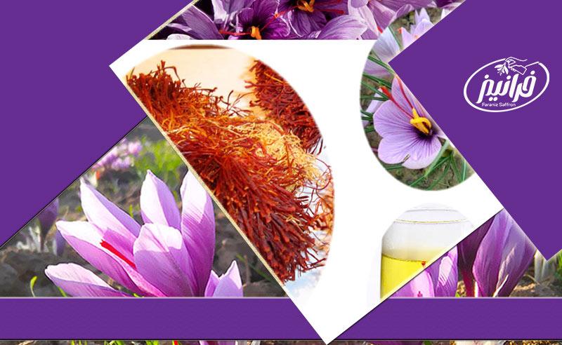 صادرات پودر زعفران متین به عراق