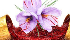خرید و فروش زعفران 5 مثقالی پاکتی