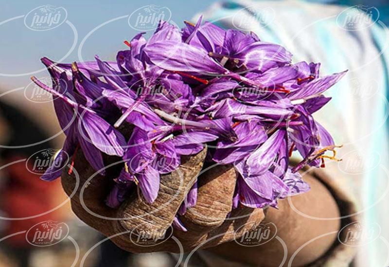قیمت زعفران بهرامن 2 گرمی تحویل در محل